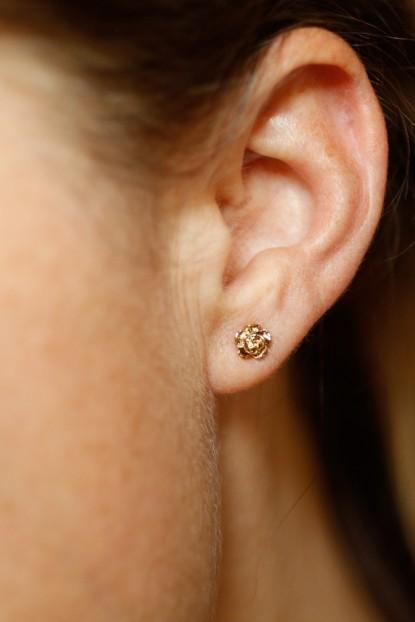 Boucles d'oreille ROSE